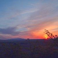 Краски заката :: Виктор Шандыбин