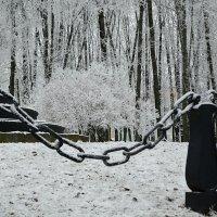 Зима в городском саду :: Милешкин Владимир Алексеевич
