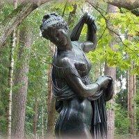В павловском парке :: vadim