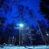 Зимний парк вечером :: Павел Крутенко