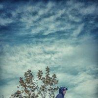 Прогулка в облака :: Olga Rosenberg