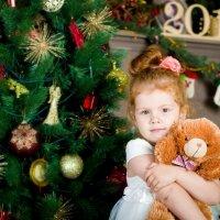 Новогоднее :: N. Efimkina