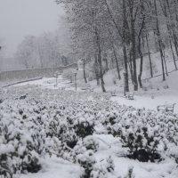 Первый снег был щедрым очень... :: Владимир Николаевич