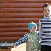 Два брата :: Анна Дорофеева