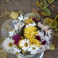 Ноябрьский букетик хризантем :: Нина Корешкова