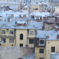 Питерские крыши :: Дмитрий