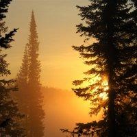 Экспансия солнца :: Сергей Чиняев