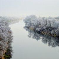 Туман :: Светлана Рос