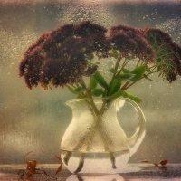 цветы осени...очиток :: Natali-C C