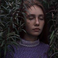 Яблоневый сад. :: Илья Степанов