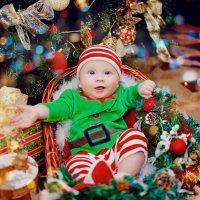 Новогодняя фотосессия для малышей :: марина алексеева