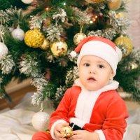 Маленький Санта :: Ксюша Богомолова