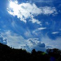 небо на даче :: Александр Прокудин