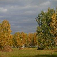 Осени приметы. :: nadyasilyuk Вознюк