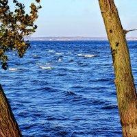 вода :: snd63 Сергей