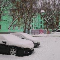 Двор встречает зиму:)))) :: Владимир Звягин