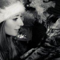 В гостях у сказки. :: Olga Kramoreva