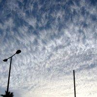 Облака... :: Герович Лилия