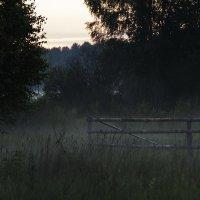 Вечерний туман :: Александр