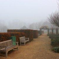 В туманном парке бродит осень. :: Юрий. Шмаков