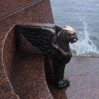 И дождь, и ветер, и Нева... :: Вера Моисеева