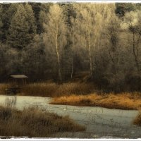 Берег реки Ухтохмы... :: leonid