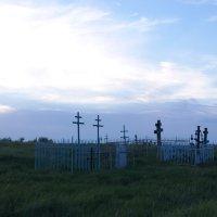 Старое кладбище :: Василиса