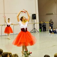 Будущая балерина. :: cfysx