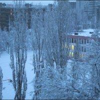 Зимний вечер :: Самохвалова Зинаида