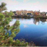 Река Мирожка. :: Светлана Агапова