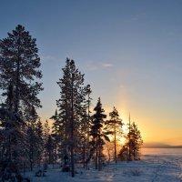 Зима у озера :: Ольга