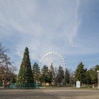 зимний парк :: Евгений