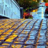 Дождик в Gorky park :: Alexey YakovLev