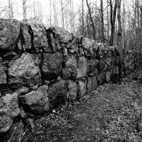 Старая стена. :: сергей лебедев