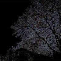 Ночные видения... :: Нина Корешкова