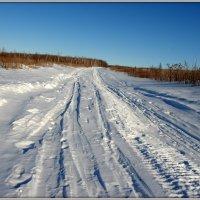 Зимняя дорога :: Андрей Заломленков