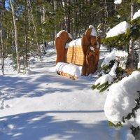 До привала 7 метров, а снега по пояс... :: Дмитрий ВЛАСОВ