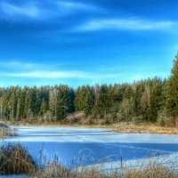 Зимнее озеро :: Милешкин Владимир Алексеевич