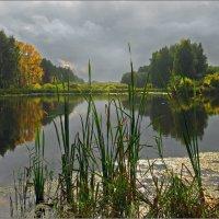 Первый день Бабьего лета :: Olenka