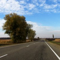 дорога в Кореновск :: Svetlana Baglai