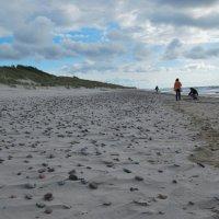 Берег Балтийского моря :: Inessa ---