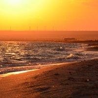 В тот жаркий вечер плавился песок... :: Ольга Голубева