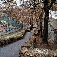 старая лестница :: Александр Корчемный