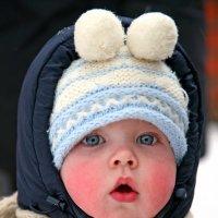 мороз :: Михаил Бибичков