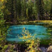 Гейзерное озеро. :: Павел Нагорнов
