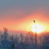 Без спички не прибудет пламя. :: Alexey YakovLev