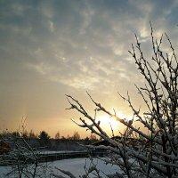 холодное солнце зимы :: ВладиМер