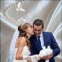 Летите голуби летите. :: Anatol Livtsov