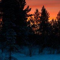 Полярная ночь :: Sergey