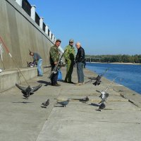 рыбаки и их соседи-голуби (каша от прикорма остается...) :: Александр Прокудин